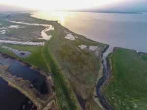 RS25514_146_Slimbridge_reserve_aerials_170315-scr.jpg