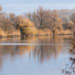 lake in hungary